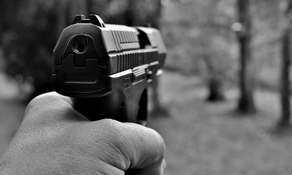 El porte de armas para defensa personal: ¿Cuáles son las medias que ha tomado el Estado para fortalecer la seguridad pública?