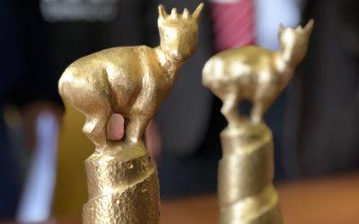 Revisa los ganadores de la 27ª edición del Festival Internacional de Cine de Valdivia